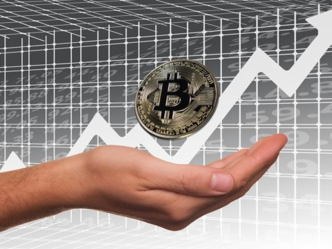 Crypto.com (CRO) Records A Further 20% Low Of Price In A Day